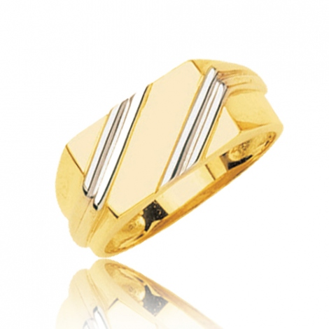 Chevalière 2 Ors Or 18 ct - 750/1000  6.54 g Mathilde